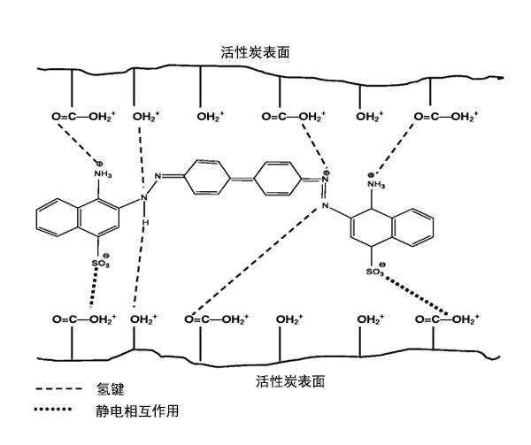 CR吸附到活性炭表面上的机理