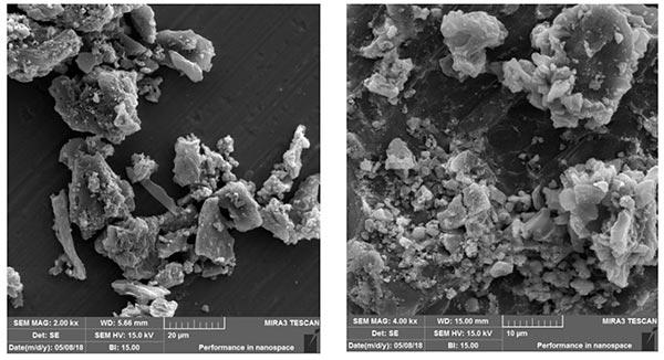 活性炭纳米复合材料的射扫描电子显微镜